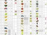 Бамбуковая посуда из Китая - фото 2