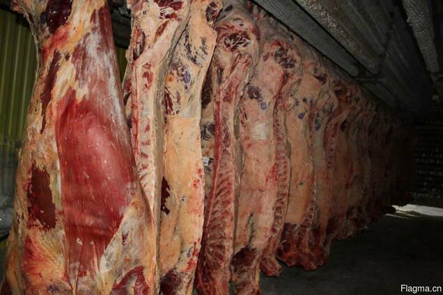 Говядина Froze beef sides (Quarters)