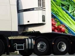 Ищем партнера для перевозки овощей и фруктов из Китая