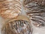 Мясо говядины боранина супродукты - photo 1