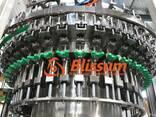 Оборудование розлива газированного напитка 40-40-10 - фото 4
