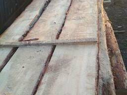 Cooperation supply of material from the Siberian cedar. larh - photo 2