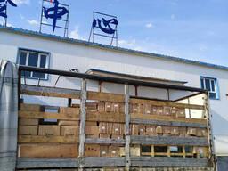 Доставка консолидация товар из Китая в Алматы 15 дней