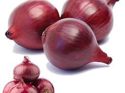 Fresh onion offer from Denmark