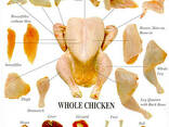 Frozen chicken whole for sale good price - photo 7