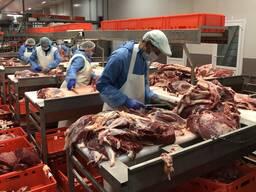 Говядина beef meat cuts
