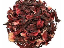 Hibiscus цветок гибискуса