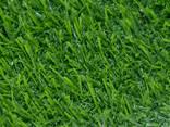 Искусственная трава для аджилити - фото 5