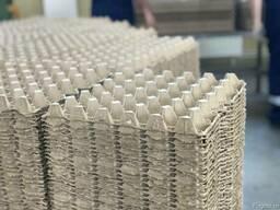 Линия для производства яичных лотков.