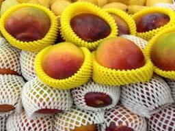 Машина по производству упаковочных сеток для защиты фруктов