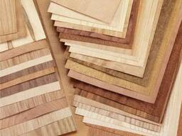 High-quality birch veneer