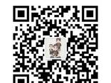 Vg1560030033/34 вкладыши шатунные wd615 huatai - фото 2