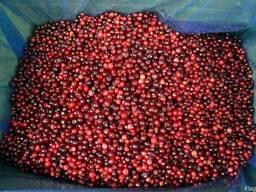 Замороженные ягоды, клубники, брусники, еживики, малина